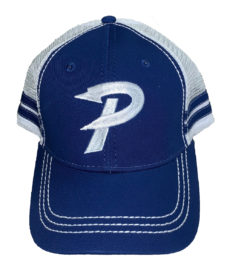 Paris embroidered trucker cap